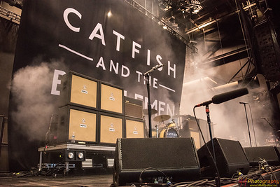 Catfish and the Bottlemen 002