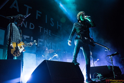 Catfish and the Bottlemen 082