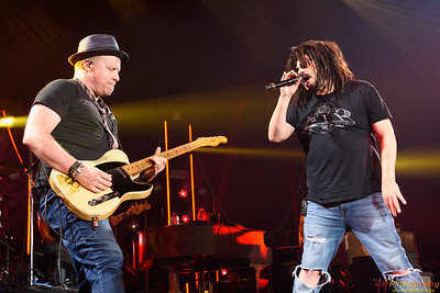 Counting Crows 071