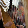 Florida Orchestra harpist Anna Kate Mackle at a Passe-a-Grill Woman's Club luncheon