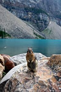 Lake Moraine Park Ranger