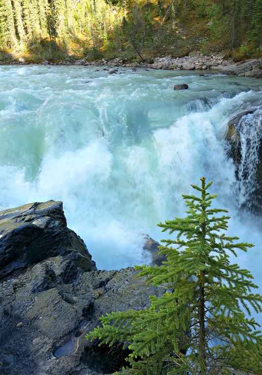 Icefields Parkway Road Trip – Sunwapta Falls