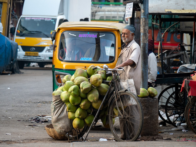 Coconuts by Bike