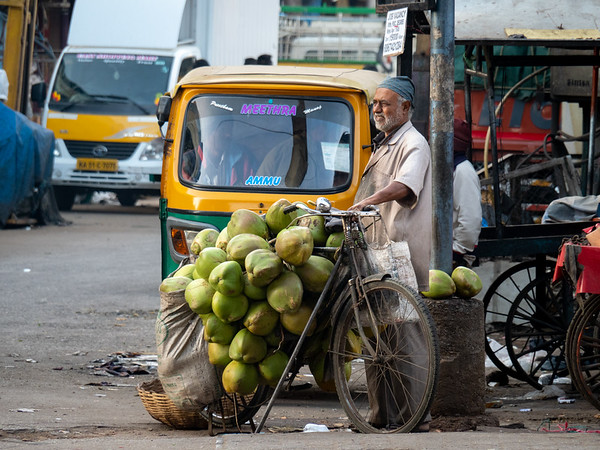 Coconuts by Bike