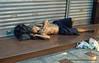 A Homeless man asleep in Silom, Bangkok, Thailand, in December 2009