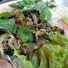 Grilled pork salad