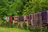 Colourful sarongs hanging to dry