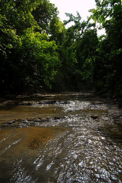 This river runs near Haatibandha leading to the small Bengali community of Hafeez Ghona