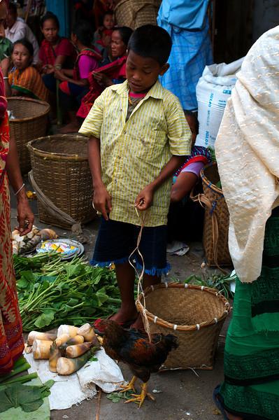 Escorting a chicken through the market