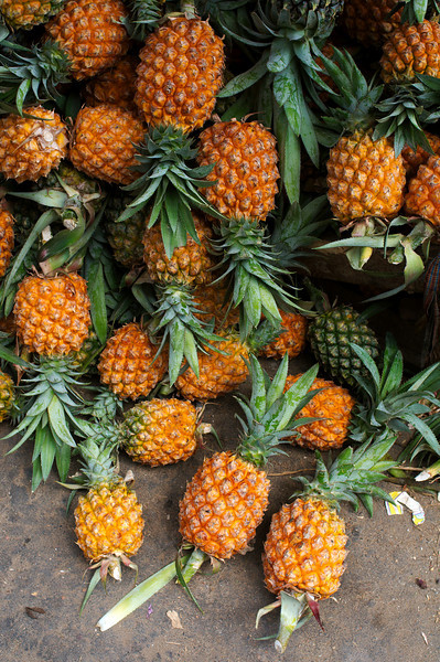 Pineapple season in the Chittagong Hill tracts