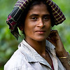 A tea picker in Sreemangol.