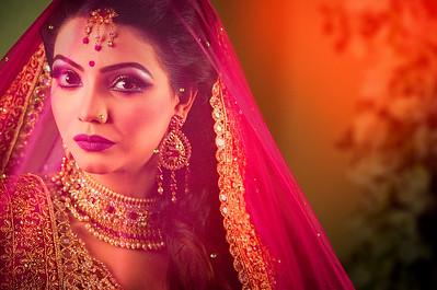 Beautiful Wedding Bride Portrait