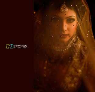 Gorgeous Bangladeshi Bride With Veil