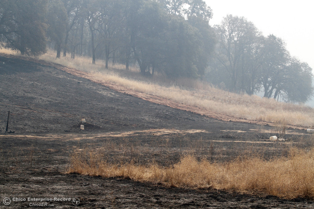 ". The effects of a ""dozer line\"" are clearly seen while surveying the damage Tuesday, Oct. 10, 2017, in Bangor, California, after the La Porte Fire ripped through the unincorporated Butte County community. (Dan Reidel -- Mercury-Register)"