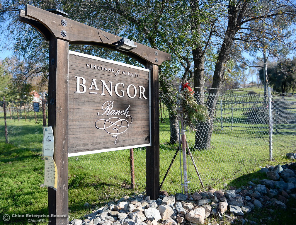 . Many trees and the vinyard have been torn out while State and Federal agencies help clean up debris at the Bangor Ranch and Vinyard following the La Porte Fire in Bangor, Calif. Wed. Dec. 13, 2017. (Bill Husa -- Enterprise-Record)