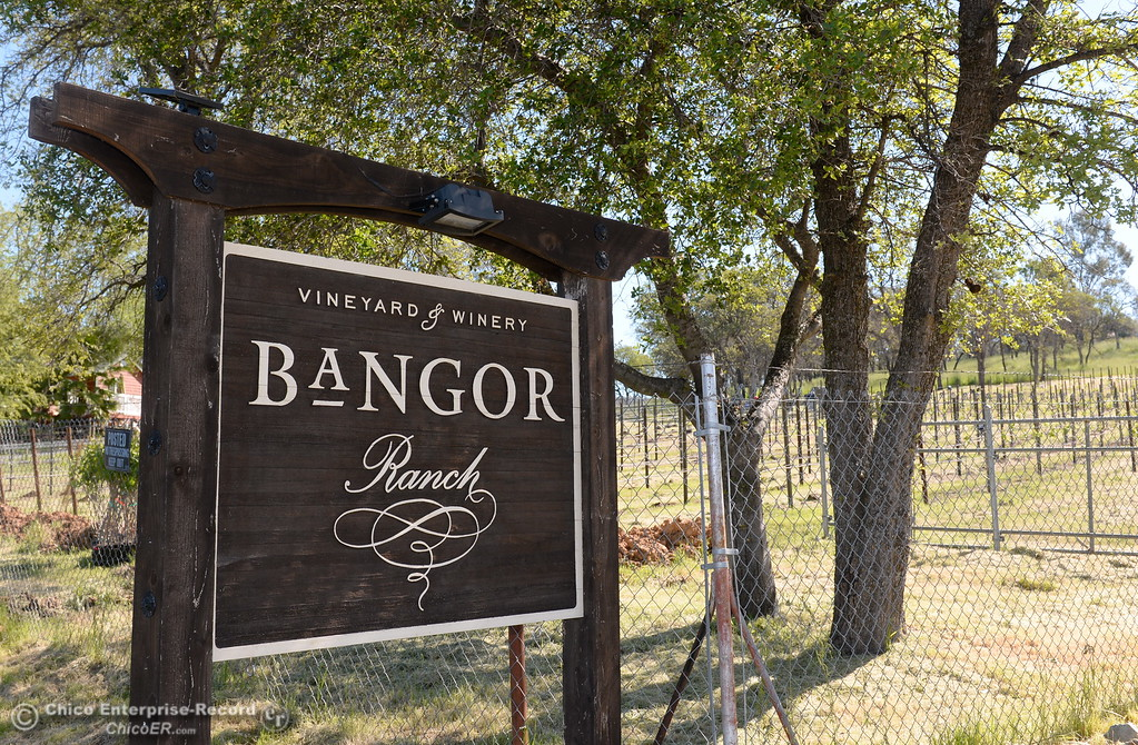 . A sign is seen at the entrance to the Bangor Ranch Vinyard & Winery on La Porte Rd. in Bangor, Calif. Friday April 20, 2018. (Bill Husa / Chico Enterprise-Record)