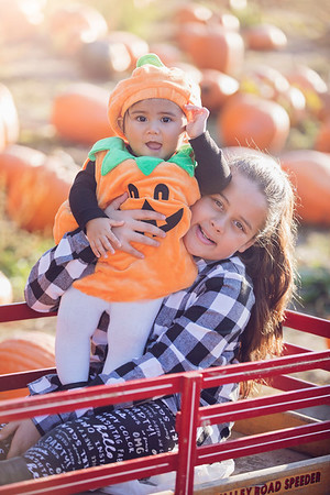 Banister Family Pumpkin Patch Mini Final Gallery