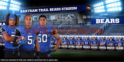 bears photo banner