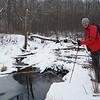 At a Beaver dam
