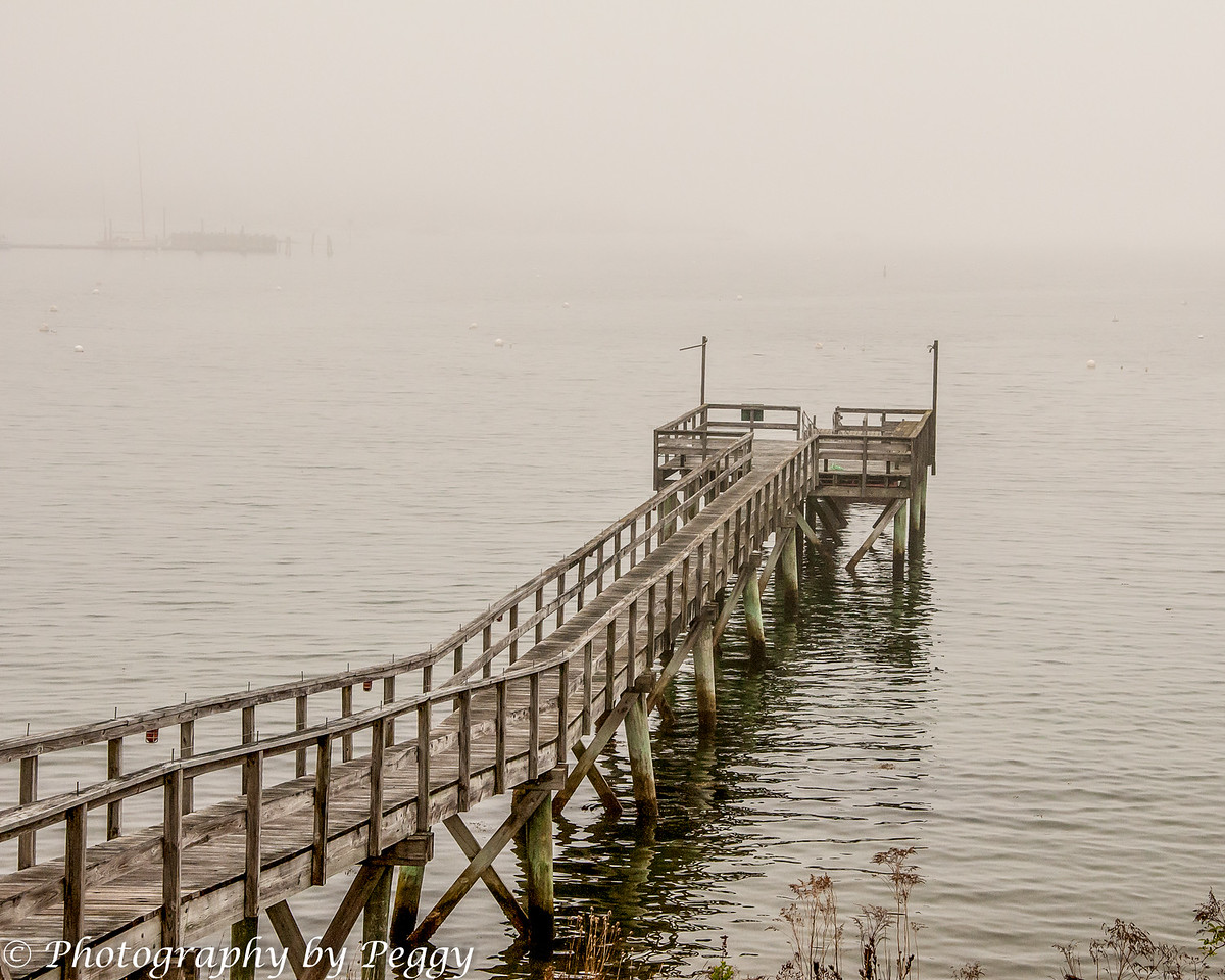 A foggy day<br /> <br /> Taken on my trip to Maine.