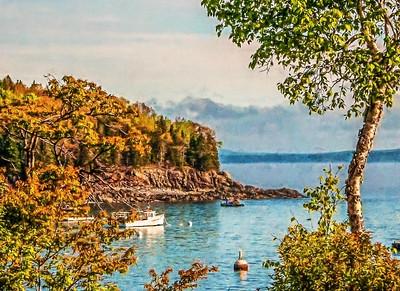 Boat in a Cove