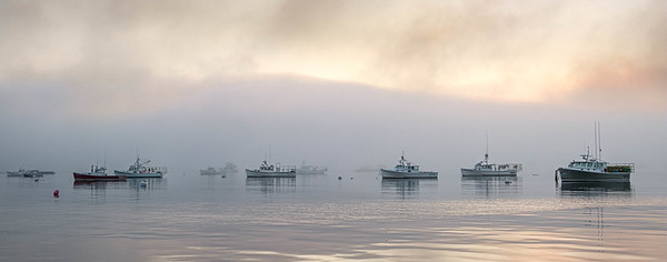 Fleet in the Fog