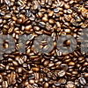 Jack Cress' specialty coffee brand, Barb City Roasters, is sold by the bag at Inboden's Meat Market, 1106 N. First St. in DeKalb, and sold brewed by the cup at Common Grounds, 50 E. Lincoln Highway in DeKalb.