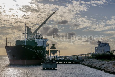Ship Docked at Flour MIll