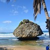 Bathsheba Rock Barbados