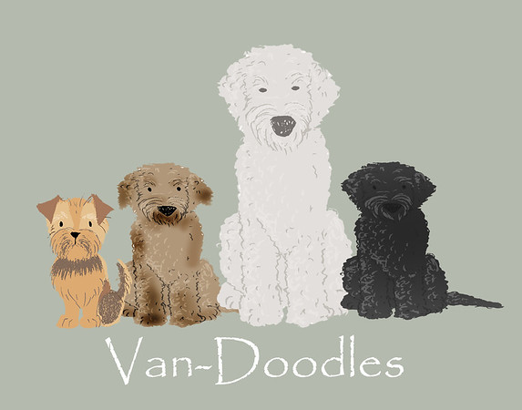 Van-doodles