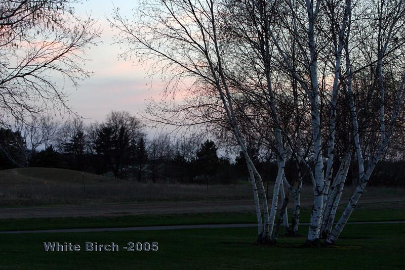 2005  Breezy Point Retreat - GTC