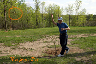 Horseshoe throwing