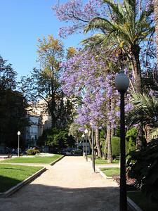 Alicante 017