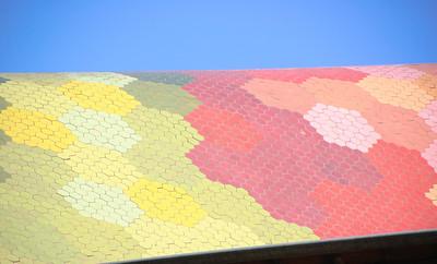 Roof of the Mercat de Santa Caterina