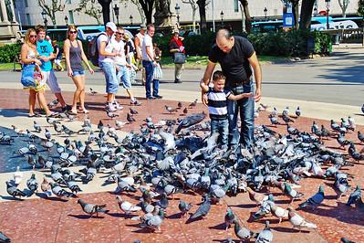 Barcelona_Boy-Pigeons_C-Square_D3S7832