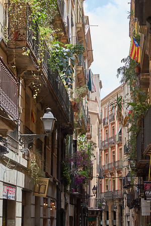 The narrow lanes of the Gothic Quarter, Barcelona