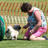 Bardney dog show-57