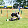 Bardney dog show-42
