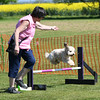 Bardney dog show-70