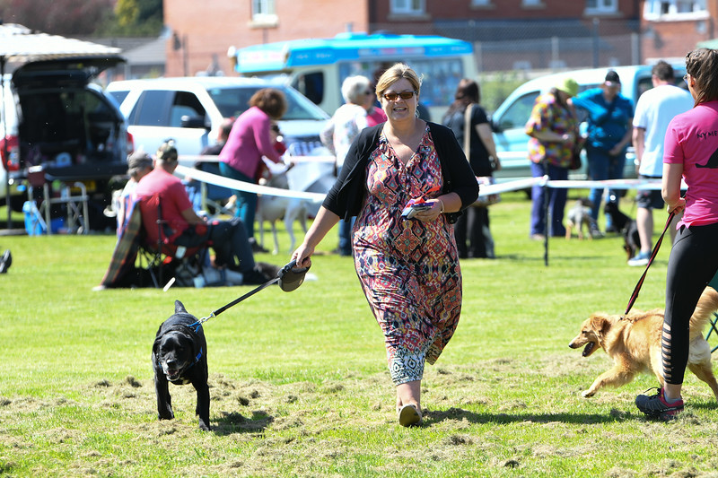 Bardney dog show-56