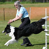 Bardney dog show-97