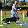 Bardney dog show-101