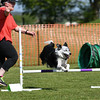 Bardney dog show-78