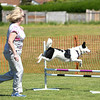 Bardney dog show-21