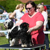 Bardney dog show-6