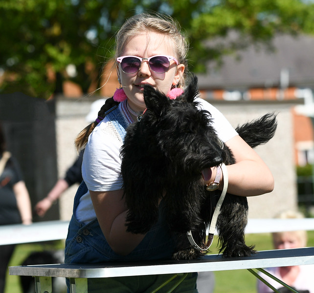 Bardney dog show-5