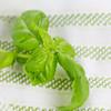 Barilla-Gluten-Free-Rotini-Salad-1657