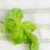 Barilla-Gluten-Free-Rotini-Salad-1647
