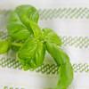 Barilla-Gluten-Free-Rotini-Salad-1654