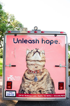 Bark-For-A-Cause-2012-009
